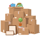 house_packing_opt